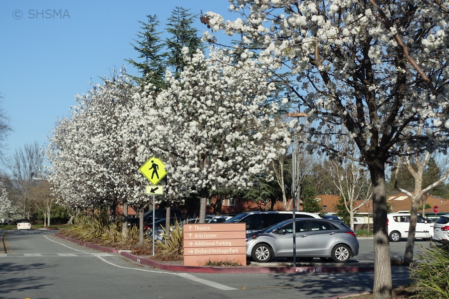 Entrance to the museum parking lot, March 1, 2016