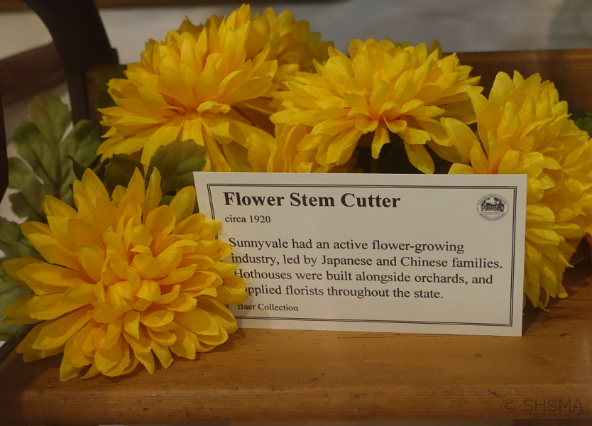 Flower Stem Cutter