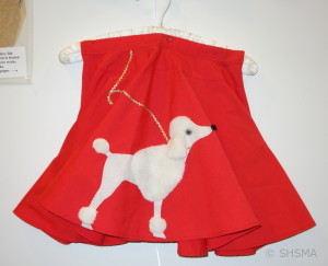 homemade poodle skirt