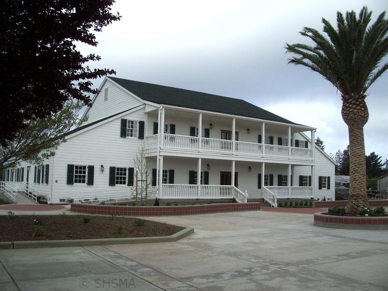April 14, 2008 — Palms Tree Unfurled