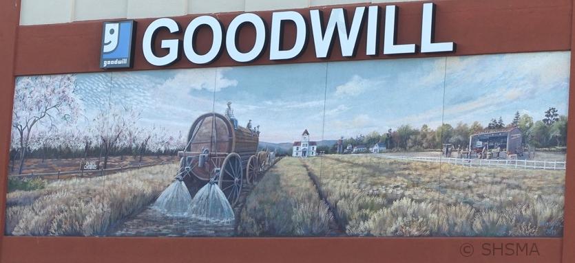 Goodwill Mura