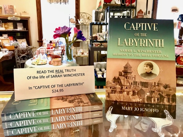 "photo of the book ""Captive of the Labyrinth"" on display"