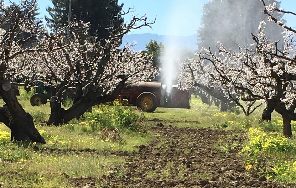 Spraying, March 17, 2019